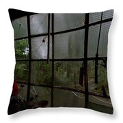 The Back Shed Throw Pillow