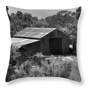 The Barn 2 Throw Pillow