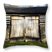 The Barn And The Banjo Mandolin Throw Pillow