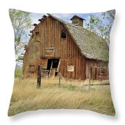 the Barn  Throw Pillow by Fran Riley