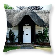The Barn House Door Nether Wallop Throw Pillow