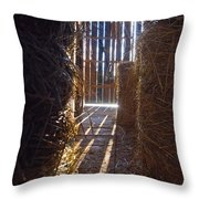 The Barn. Throw Pillow