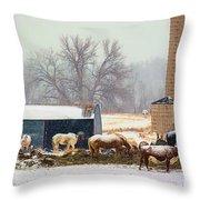 The Barn Yard Throw Pillow