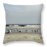 The Beach Boys Throw Pillow by Skip Willits