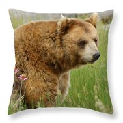 The Bear Dry Brushed Throw Pillow