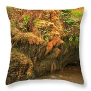 The Bearded Garden Throw Pillow