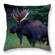 The Bearded One Throw Pillow