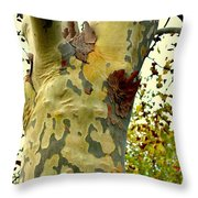 The Beatiful Sycamore Throw Pillow