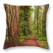 The Beautiful And Massive Giant Redwoods Sequoia Sempervirens In Redwoods National Park. Throw Pillow by Jamie Pham