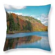 The Beautiful Bald Mountain Pond Throw Pillow