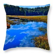 The Beautiful Cary Lake - Old Forge New York Throw Pillow