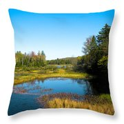 The Beautiful Moose River In Old Forge New York Throw Pillow