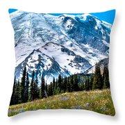 The Beautiful Mount Rainier At Sunrise Park Throw Pillow