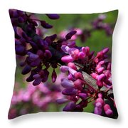 The Beautiful Redbud Tree Throw Pillow
