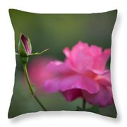 The Beauty And The Promise Throw Pillow