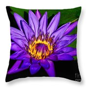 The Beauty Of A Water Liliy Throw Pillow