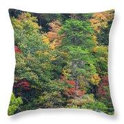 The Beauty Of Autumn Throw Pillow