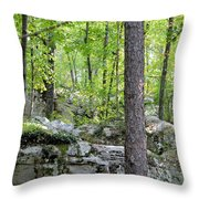 The Beauty Of Boulder Field Throw Pillow