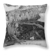 The Beauty Of Ice Throw Pillow
