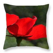 The Beauty Of Imperfection Throw Pillow