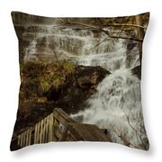 The Beauty Of It All Throw Pillow