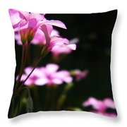 The Beauty Of Small Things 2 Throw Pillow