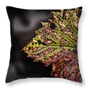 The Beauty Of Stress Throw Pillow