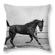 The Beauty Of The Horse Throw Pillow