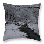 The Beauty Of Winter Throw Pillow