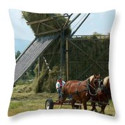 The Beaverslide          Throw Pillow