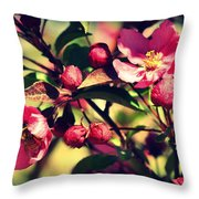The Bee And The Blossom Throw Pillow
