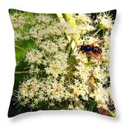 The Bee And The Flowers At Troldhaugen Throw Pillow