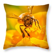 The Bee Gets Its Pollen Throw Pillow