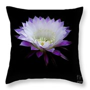 The Belle Of The Ball Throw Pillow
