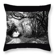 The Bend In The Road Bw Throw Pillow