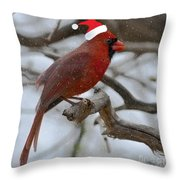 The Best Of The Season.. Throw Pillow