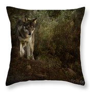 The Big And Not Too Bad Wolf Throw Pillow