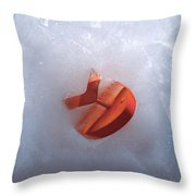 The Big Freeze Throw Pillow