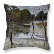 The Billabong V12 Throw Pillow