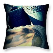 The Birdbath Corner Throw Pillow