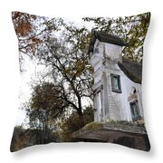 The Birdhouse Kingdom - Mountain Chickadee Throw Pillow