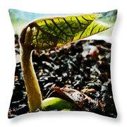 The Birth Of A Runner Bean Throw Pillow