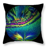 The Birth Of Life Throw Pillow