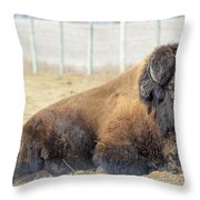 The Bison Throw Pillow