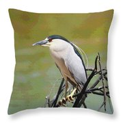 The Black Crown Night Heron Waiting For Dark Throw Pillow