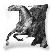 The Black Rider Throw Pillow