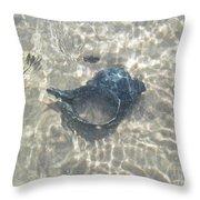 The Black Seashell Throw Pillow