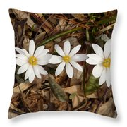 The Bloodroot Trio Throw Pillow