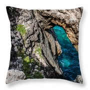 The Blow Hole Throw Pillow