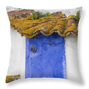 The Blue Corner In The White House Throw Pillow